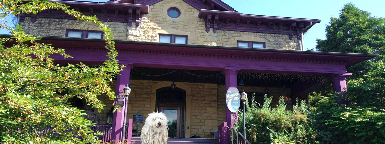 Moondance Inn with Dog out front